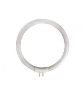 Lâmpada Circular T4 12W 230V Para VTLAMP10 - LAMP12/10